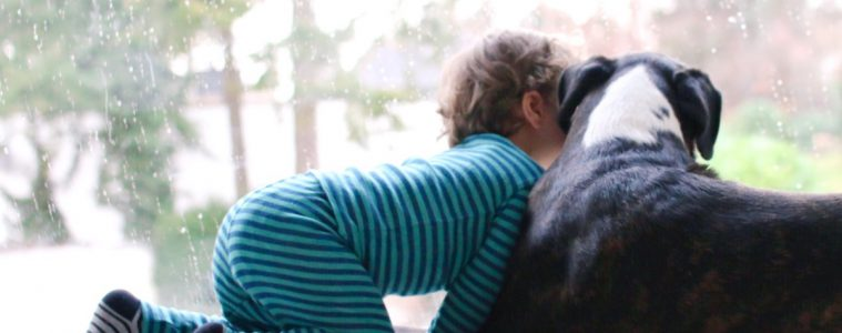 Freundschaft Kind und Hund zusammen aufwachsen