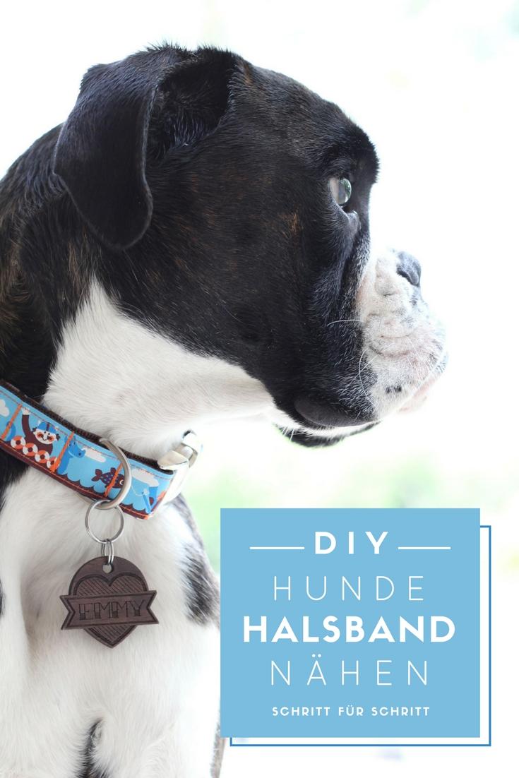 Hundehalsband selber nähen: Anleitung Schritt für Schritt zum selbstgemachten Halsband