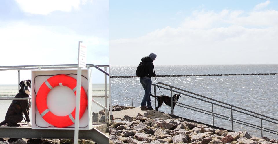 ausflug-mit-dem-wohnmobil-nordsee