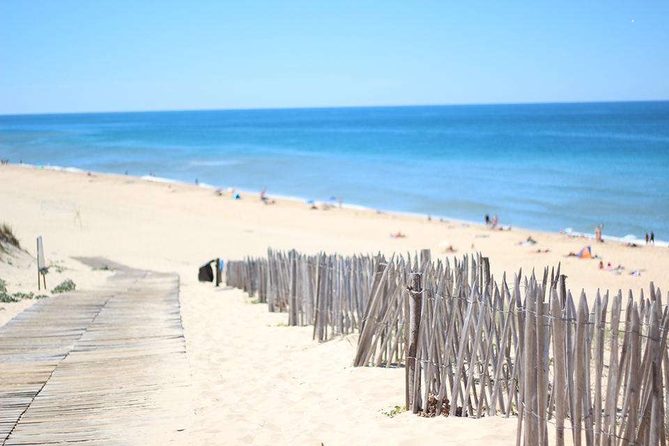 Strandurlaub mit Hund in Frankreich