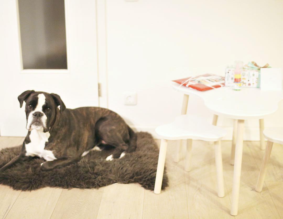 Kindermoebel-Sitzgruppe-mit-Hund