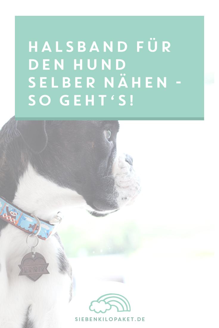 Halsband-Hund-naehen-Anleitung-Tutorial-DIY