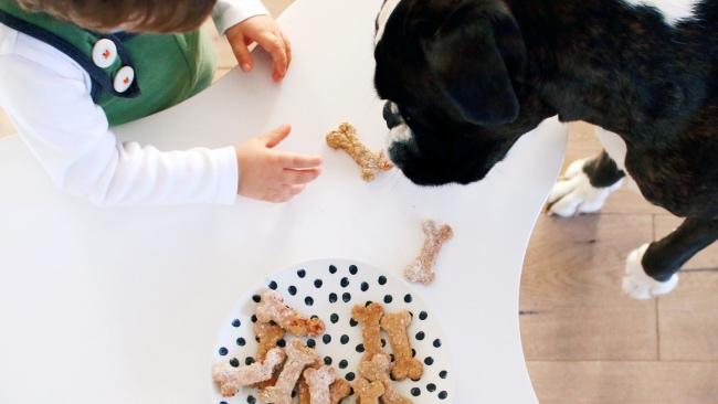 Rezept - backen für Hunde