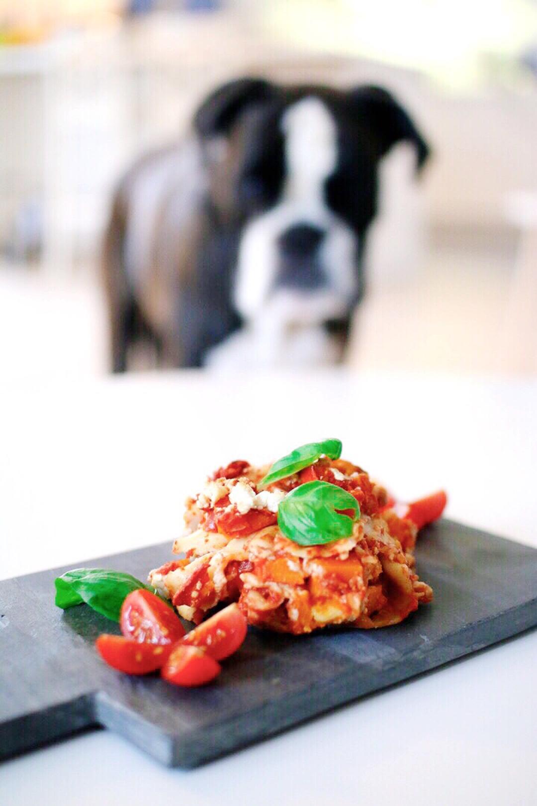 Rezept Lasagne vegetarisch mit Kürbis & Feta