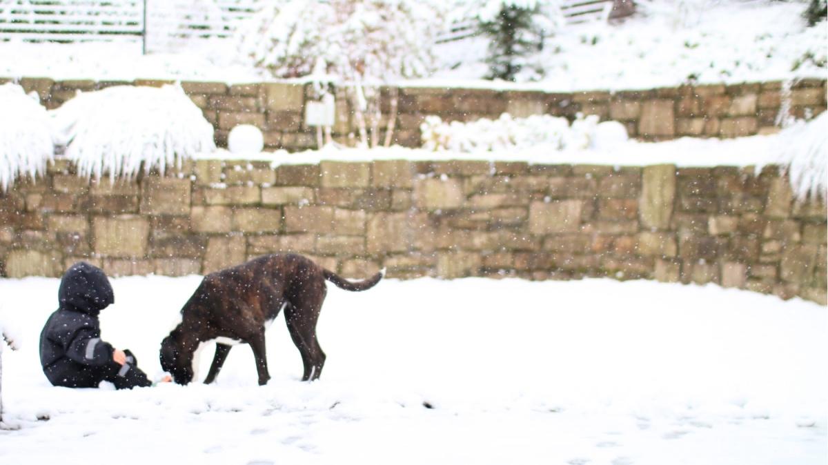 Winter mit Kleinkind - was anziehen? Ratgeber sieben Tipps & Tricks