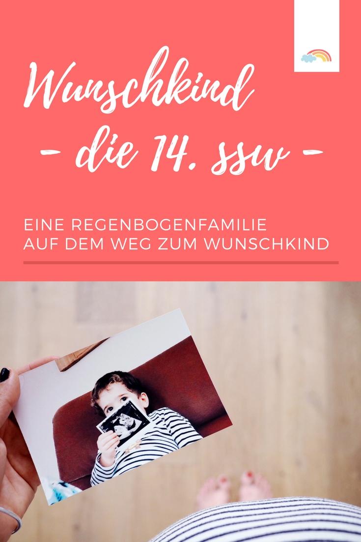 Unser Weg zum Wunschkind: ICSI, Kryo und ein Wunder geschieht - eine Regenbogenfamilie bekommt ein Baby #wunschkind #schwangerschaft #schwanger #icsi #kinderwunsch #14ssw