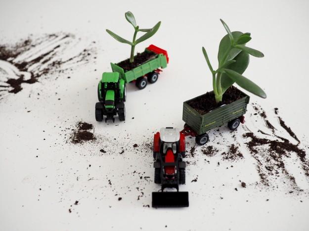 Basteln mit Kindern DIY Spielzeugauto Pflanze