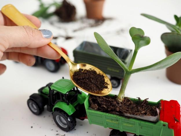 Deko im Kinderzimmer Pflanzen basteln mit Kindern
