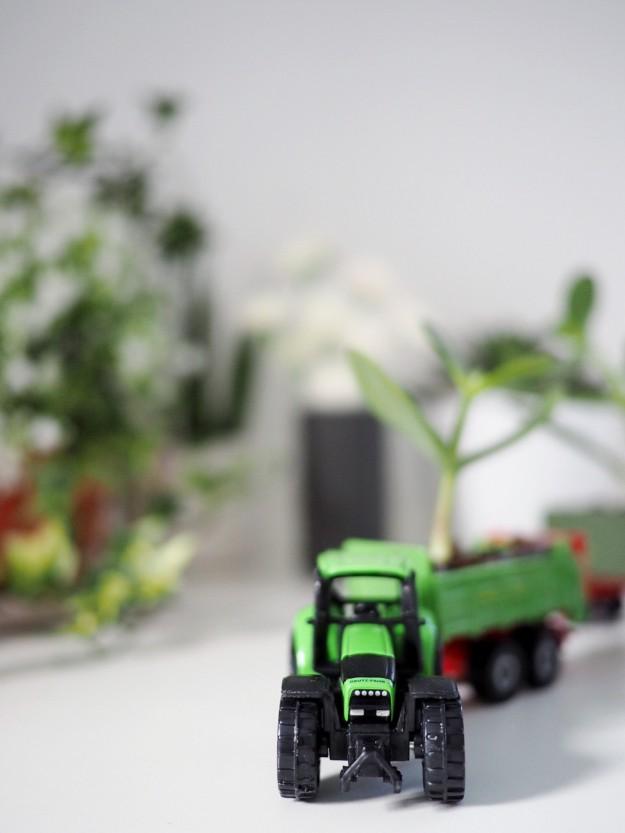 Spielzeugauto Bastelidee DIY Pflanze im Kinderzimmer