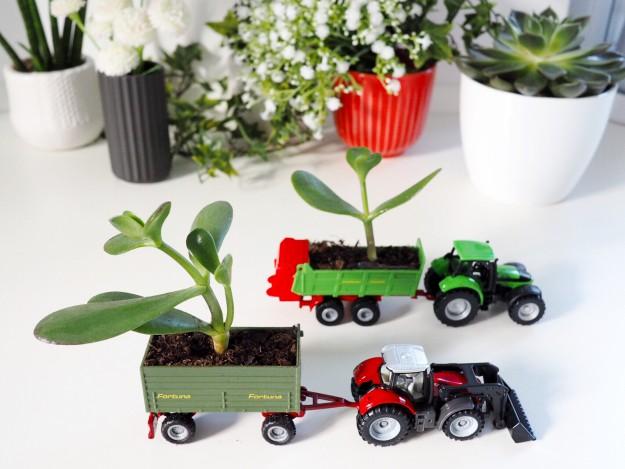 Spielzeugauto DIY basteln mit Kindern - Pflanzen im Kinderzimmer