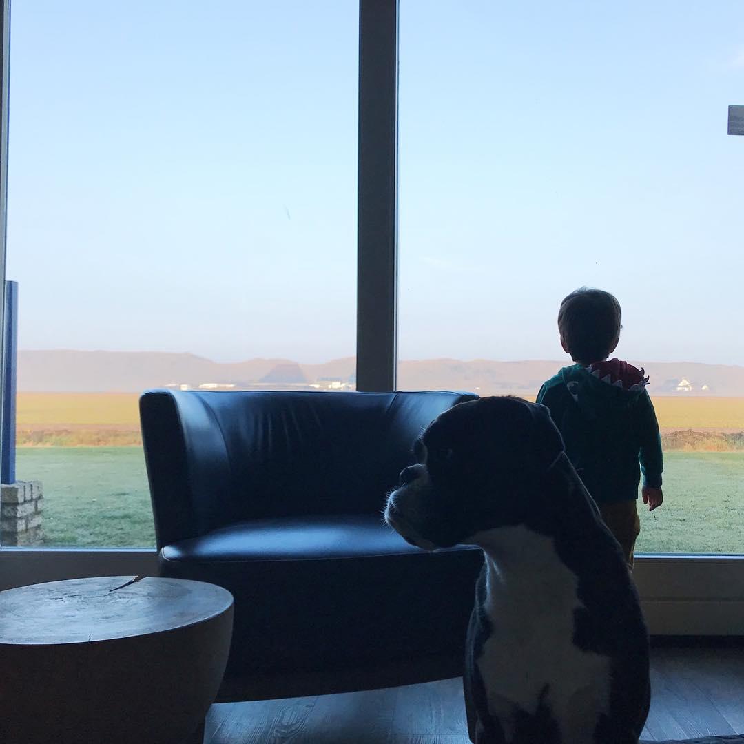 Blick auf die Düne Holland Familienurlaub Nordsee Landal Ooghduyne