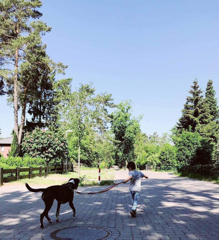Familienglück Spaziergang slow parenting Familienleben