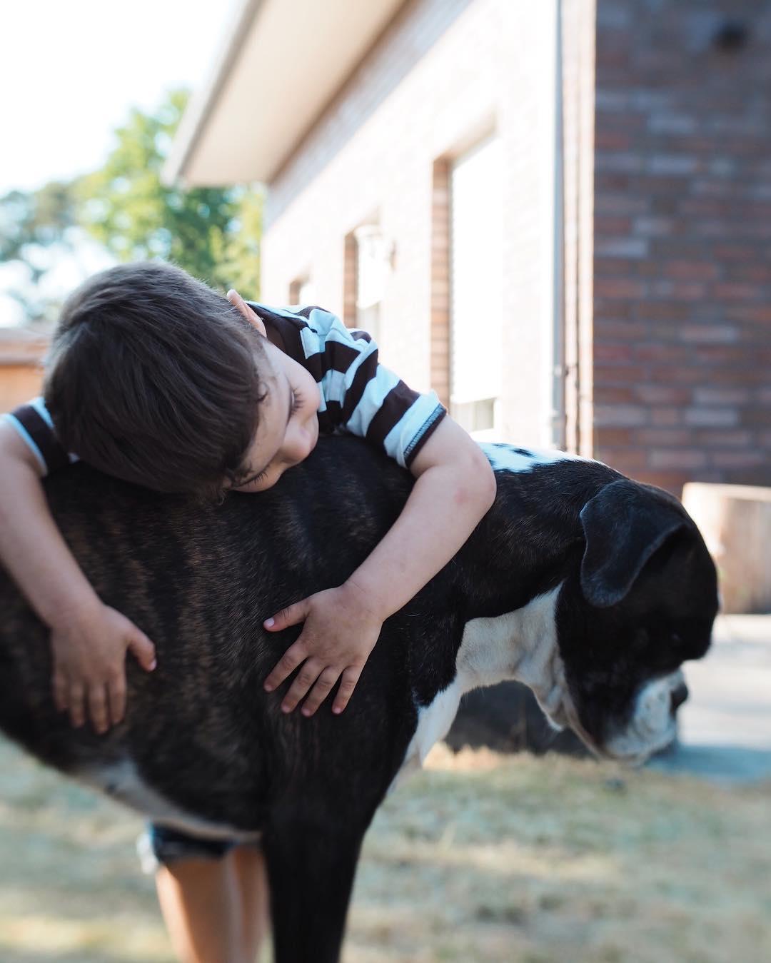 Freundschaft - Warum Zeit ein Geschenk ist - Das Familienleben mit einem Familienhund