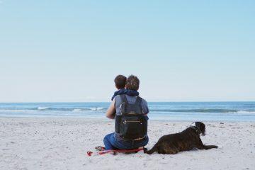 Familienurlaub in Henne Strand - Urlaub mit Hund in Dänemark