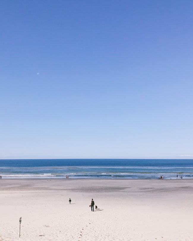 Familienurlaub in Henne Strand mit Hund - Dänemark
