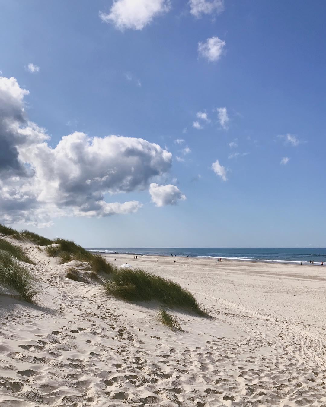 Strandurlaub mit der Familie - Dänemark mit Kindern - Ferienhaus in Henne Strand