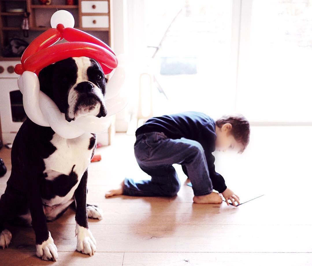 Weihnachten mit Kind und Hund - 90 Ideen für den Winter mit Kindern Winter Bucket List