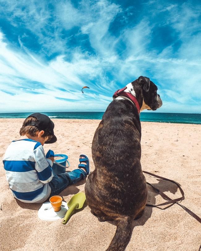 Mit Kind und Hund am Strand - das haben wir alles dabei
